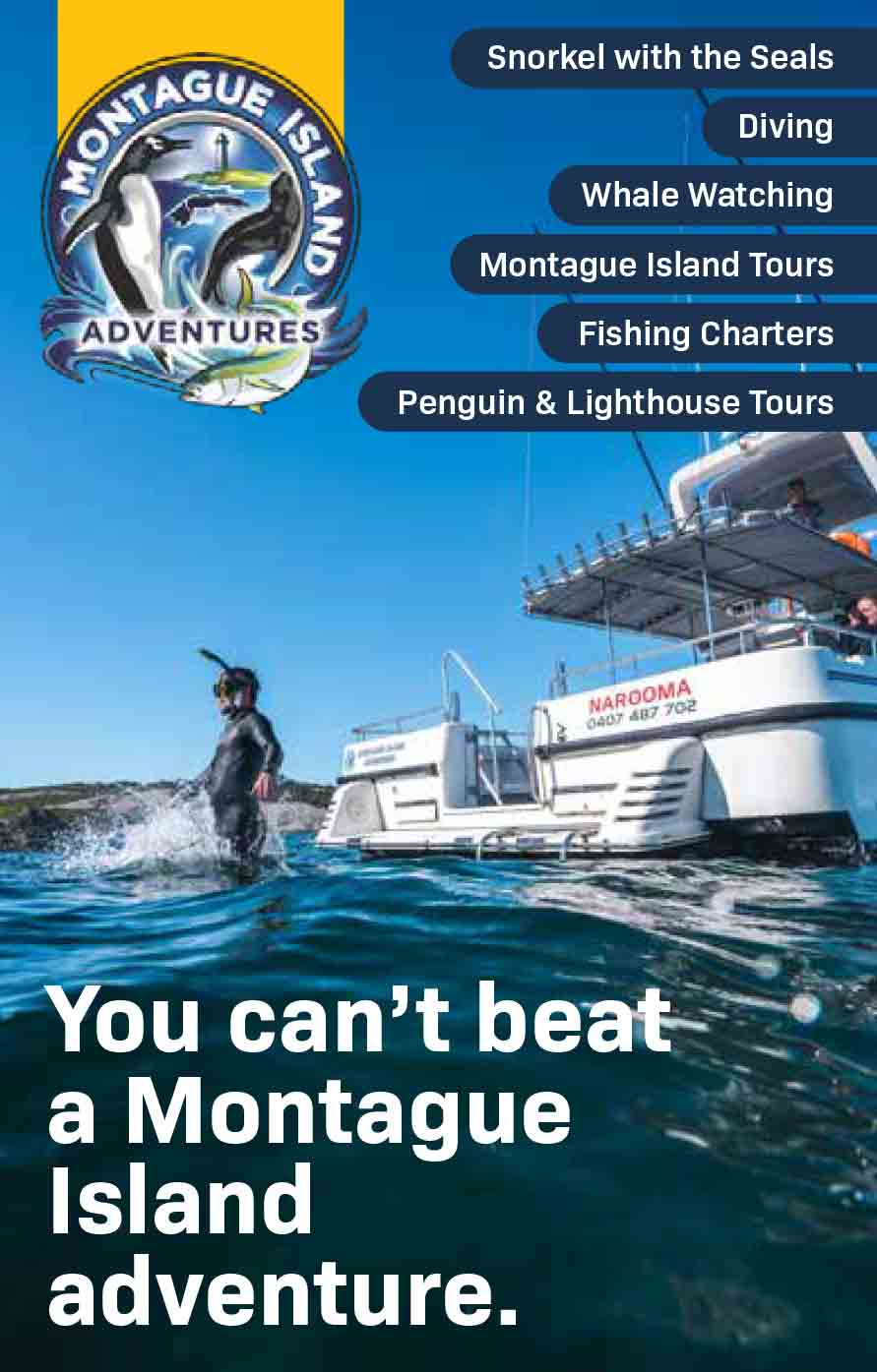 Montague Island Adventures Brochure