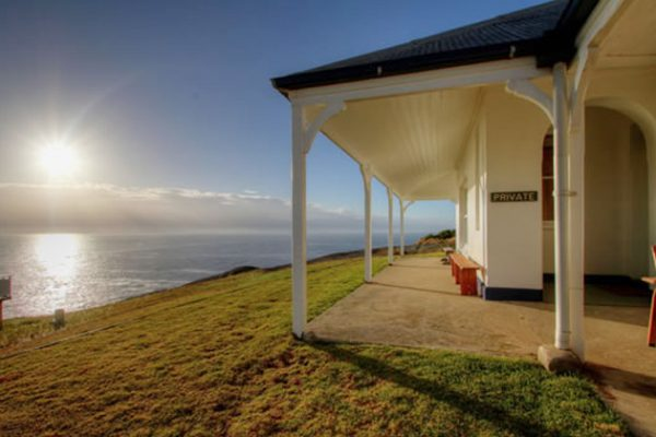 montague island accommodation